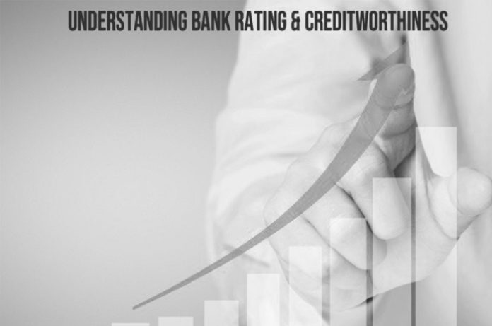 Pixel_Pusher_The_ratios_for_understainding_bank_rating_and_credit_worthiness
